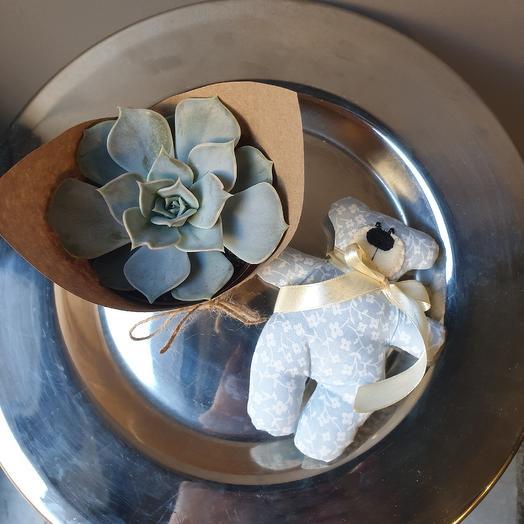 Эйхеверия с игрушкой ручной работы: букеты цветов на заказ Flowwow