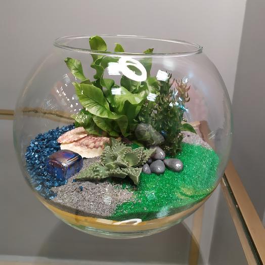 """Флорариум """"Затерянный остров"""": букеты цветов на заказ Flowwow"""
