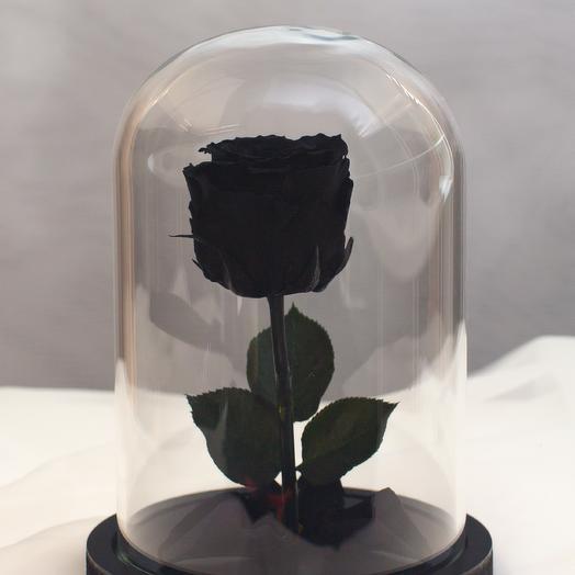 Роза в колбе RozaRose Мини Черная: букеты цветов на заказ Flowwow