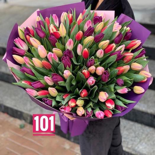 101 tulips mix