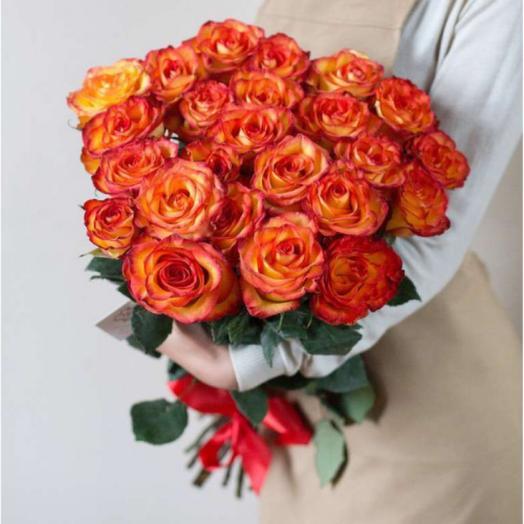 Роза Эквадор «Хай Меджик»