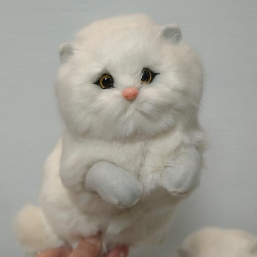 Сувенир котёнок