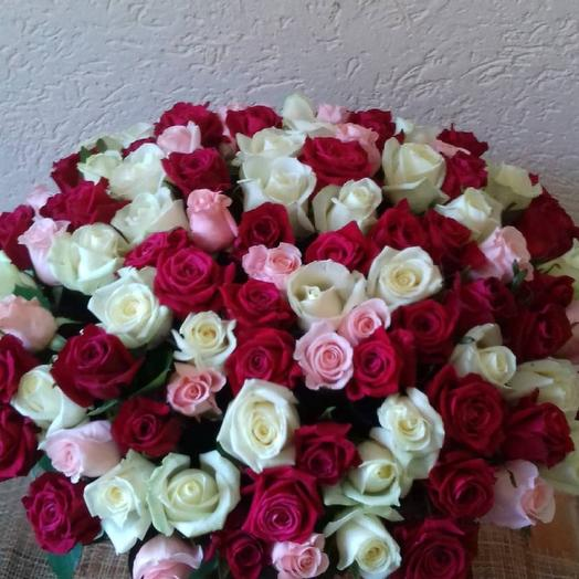 101роза трёх расцветок