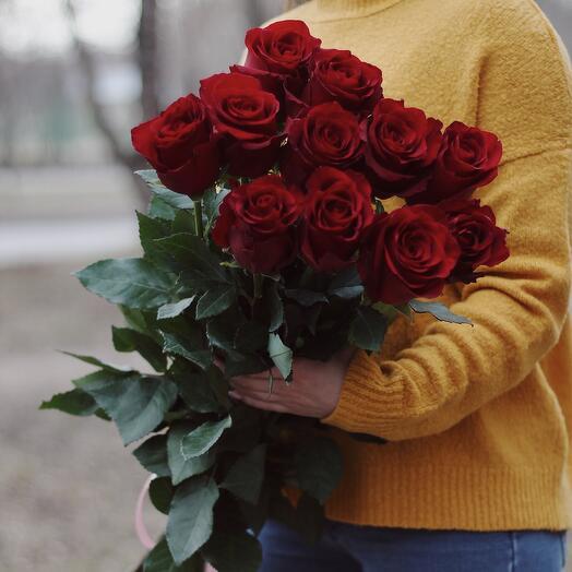 Розы Экводор 11 штук (80см)