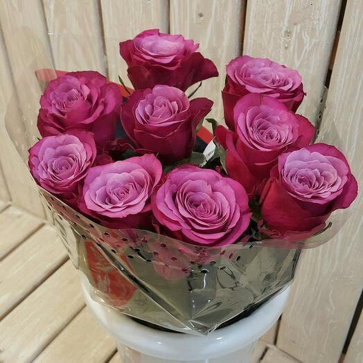 Розы Принц Персии-9 шт