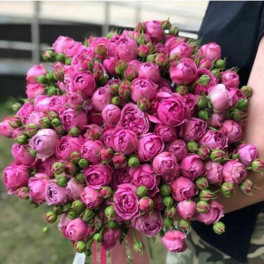 51 кустовая пионовидна роза «Баблгам»