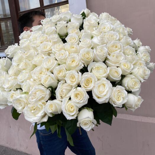 101 королевская Роза