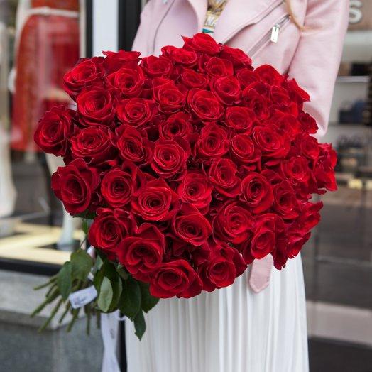51 красная длинная роза