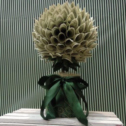 Денежное дерево: букеты цветов на заказ Flowwow