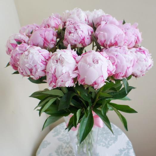 Букет из 19 нежно-розовых пионов: букеты цветов на заказ Flowwow