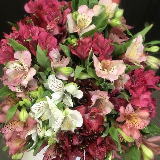 Букет Альстромерия микс Премиум: букеты цветов на заказ Flowwow