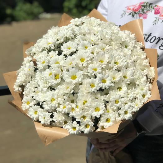 Букет из 35 хризантем. N425: букеты цветов на заказ Flowwow