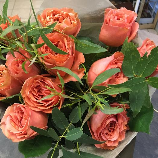 Эвкалипт: букеты цветов на заказ Flowwow