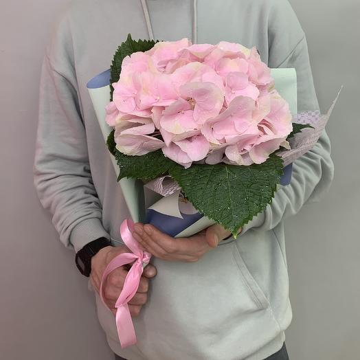 Гортензия «Розовая»: букеты цветов на заказ Flowwow