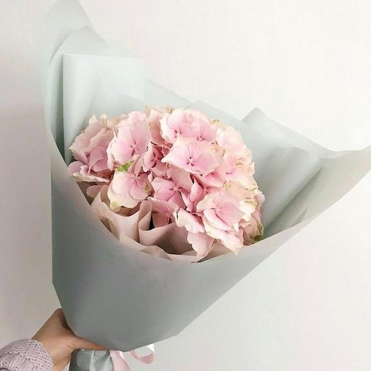 Розовая гортензия: букеты цветов на заказ Flowwow