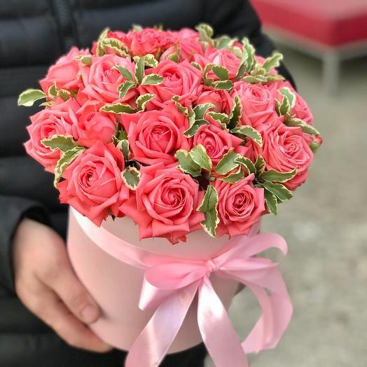 Коралловые кустовые розы