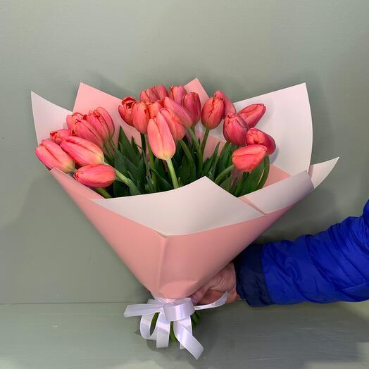 Тюльпан розовый 25 шт
