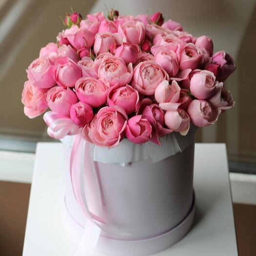 Шляпная коробка пионовидных роз «Сильвия» 837
