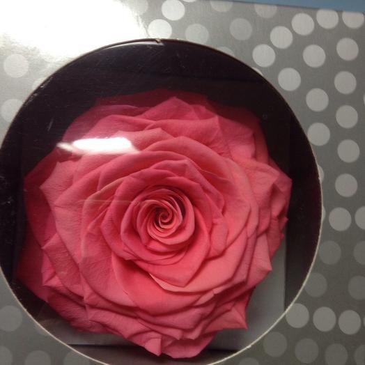 Стабилизированная роза в фирменной коробке: букеты цветов на заказ Flowwow