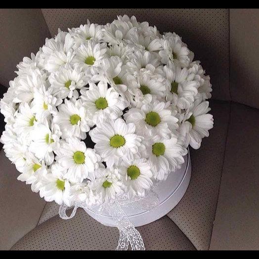 Ромашки в коробке : букеты цветов на заказ Flowwow