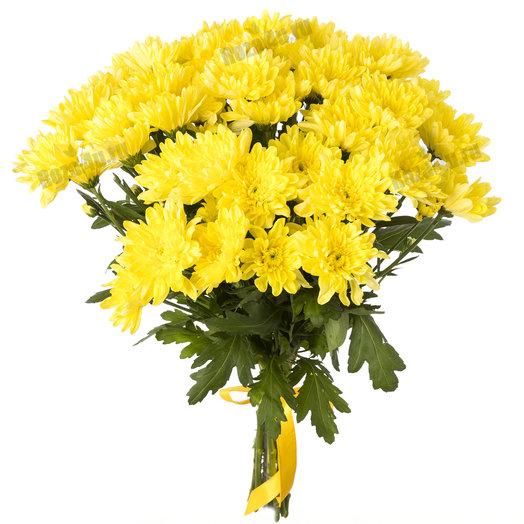 11 хризантем под ленту: букеты цветов на заказ Flowwow