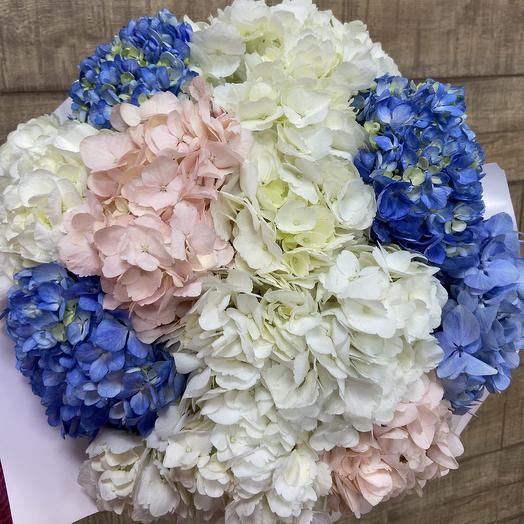 Огромный букет гортензии: букеты цветов на заказ Flowwow