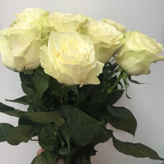 Роза Мондиаль 9 шт: букеты цветов на заказ Flowwow