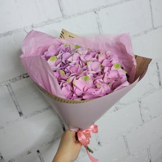 Красивая гортензия в стильной упаковке: букеты цветов на заказ Flowwow