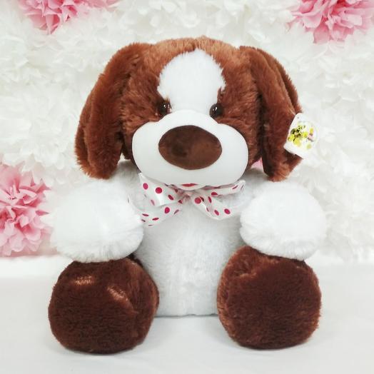 Собака Боб 60 см