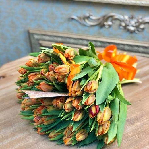 Тюльпан Оранж 49