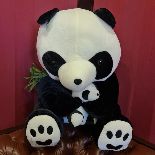Большая панда с малышом и эвкалиптом