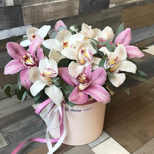 Сказочная орхидея
