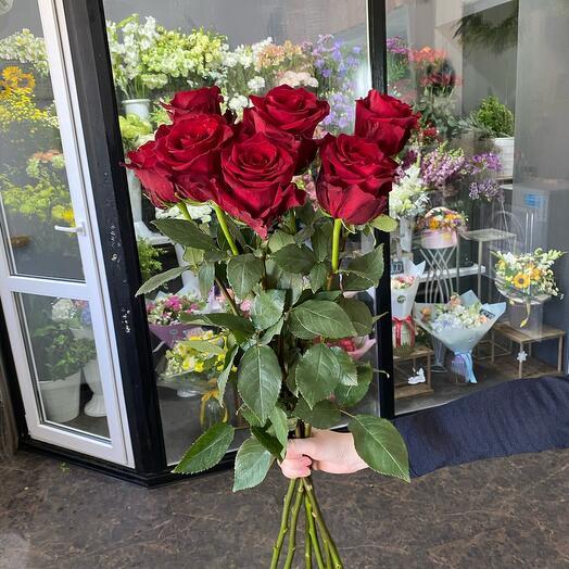 Букет 7 красных роз (80см - Голландия)