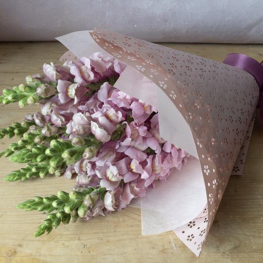 Антиринум: букеты цветов на заказ Flowwow