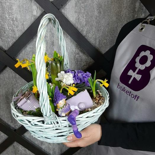 Сад эльфов: букеты цветов на заказ Flowwow