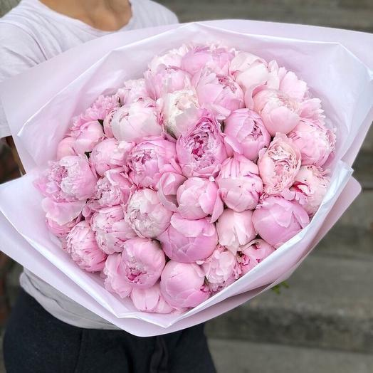 Пионы Сара Бернар розовые в дизайнерской упаковке 51 Шт: букеты цветов на заказ Flowwow