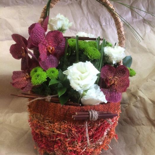 Корзинка с орхидеей: букеты цветов на заказ Flowwow