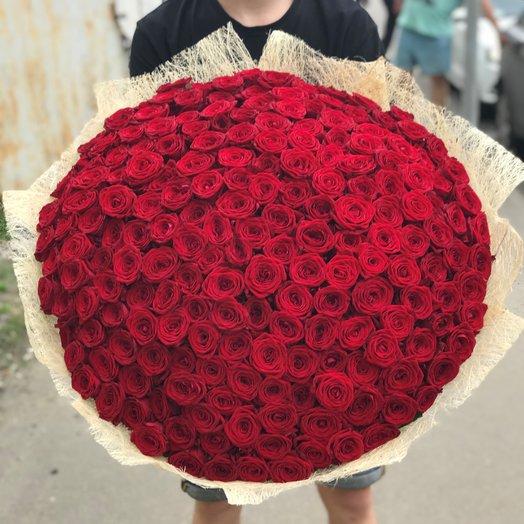 Букет из 201 Красной розы (70 см) N201: букеты цветов на заказ Flowwow