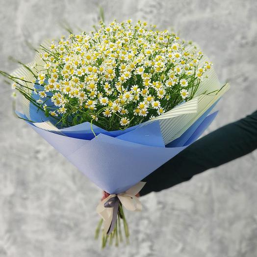 Летний букет ромашек в голубой упаковке: букеты цветов на заказ Flowwow