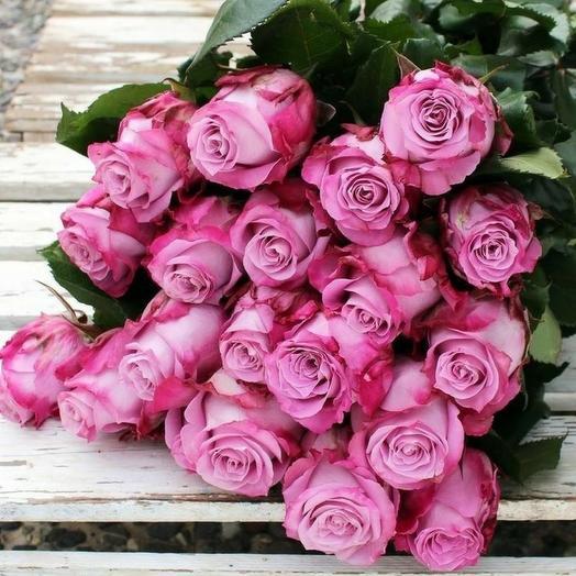 19 Эквадорских роз 60 см