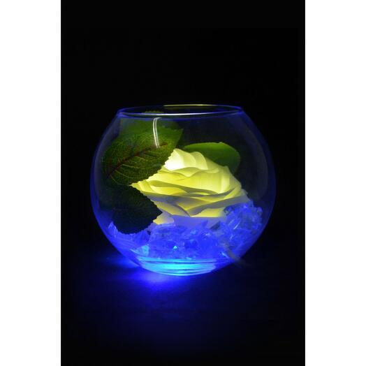 Ночник Роза в шаре Белая (син)