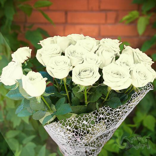 Роза белая элитная 15 шт