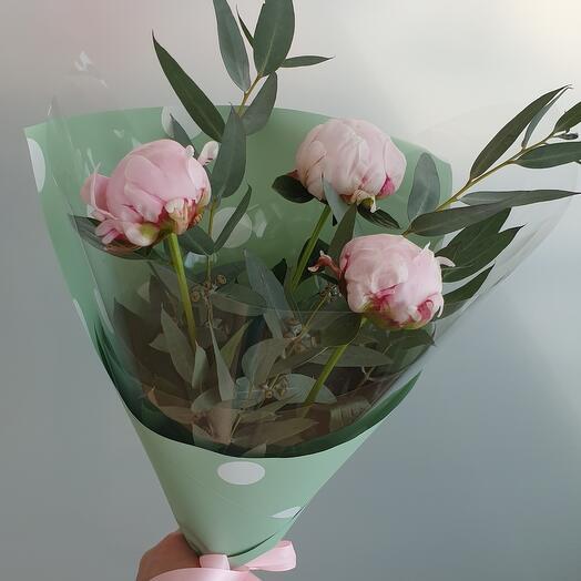 Розовый пион