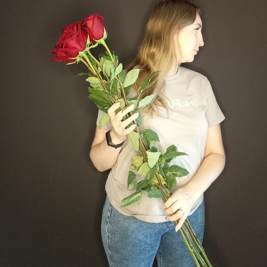 Метровые розы
