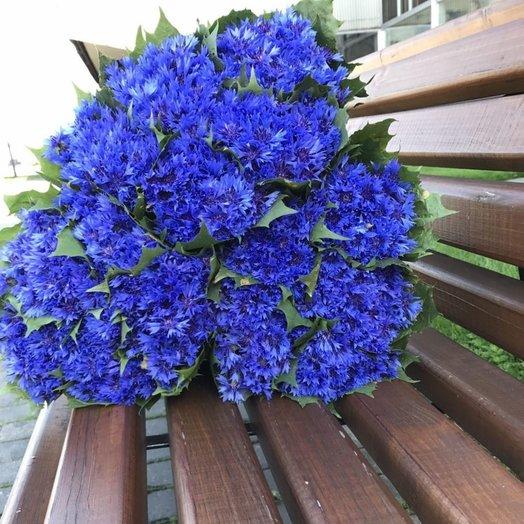Васильки для души(1000шт): букеты цветов на заказ Flowwow