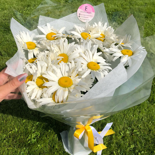 19 солнечных ромашек: букеты цветов на заказ Flowwow