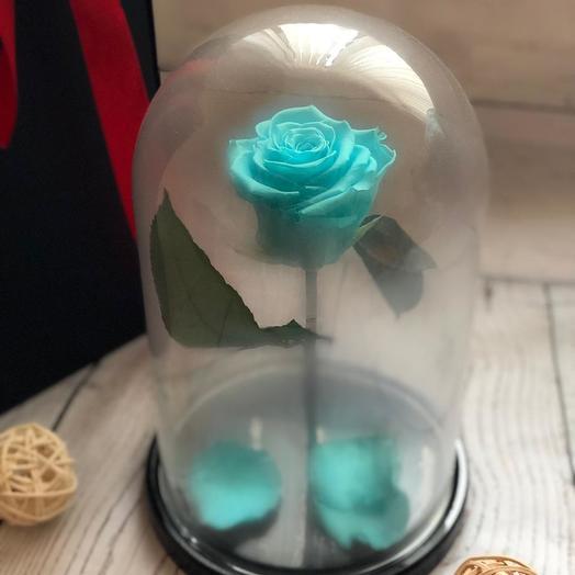 Живая роза в колбе цвет тиффани: букеты цветов на заказ Flowwow