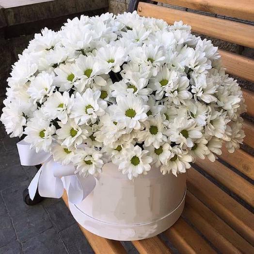 Ромашки цветы: букеты цветов на заказ Flowwow