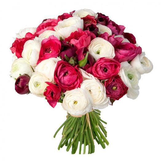 Ранункулюсы 39 шт: букеты цветов на заказ Flowwow