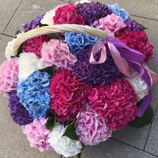 Гортензии микс в корзине 51 шт: букеты цветов на заказ Flowwow
